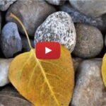 """""""La piedra"""": canción para compartir en la Pascua 2019"""